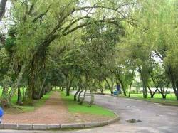 Venta lote cementerio jardines de paz bogota colombia for Cementerio jardin de paz